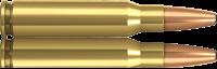 Norma 308 Win Oryx