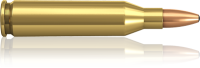 Norma 243 Win Oryx 6,5 g